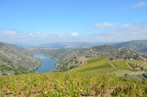 """Vista do lado esquerdo do """"meião"""". O Douro correndo para o Porto."""
