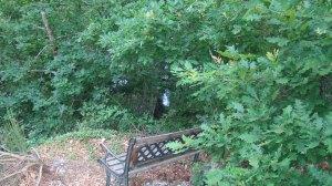 Banquinho estratégico perto das vinhas e do rio que banha a propriedade. Propício para um momento com a natureza.