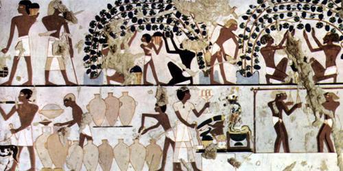 egypt-wine-labels-inside