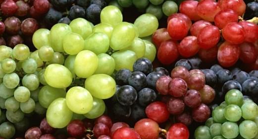 tipos-de-uva